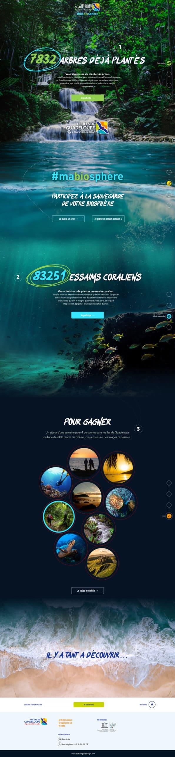 ctig webdesign